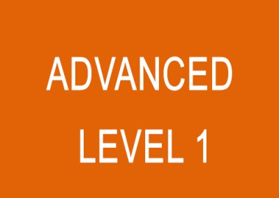 Advanced (Level 1)