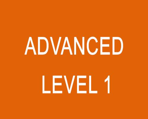 Advanced (Level 1)