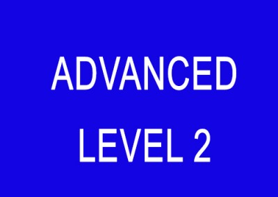 Advanced (Level 2)