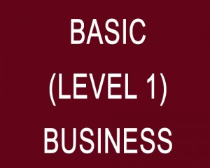 basic-level1-business