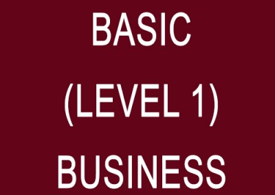 Basic (Level 1) – Business