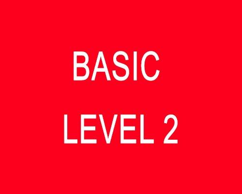 Basic (Level 2)