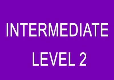 Intermediate (Level 2)