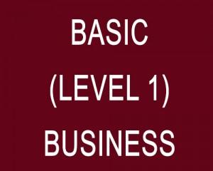 basic-level1-business