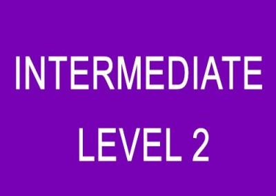 Intermediate (Level 2)